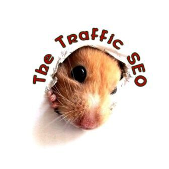 The Traffic SEO contact page - Badgeworth SEO & WordPress agency in Gloucestershire